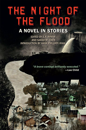 Cover for The Night of the Flood, a novel in stories