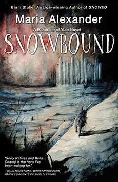 Snowbound Cover