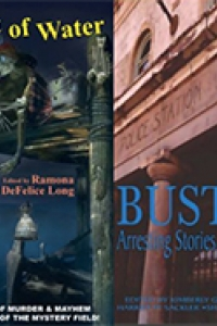 Covers of the Anthologies where my stories were featured
